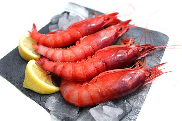 gamba roja de dénia la xerna del mar